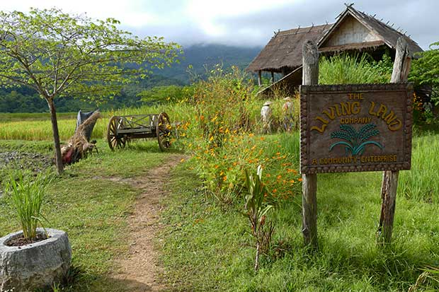 Welcome to Living Land (Laos)