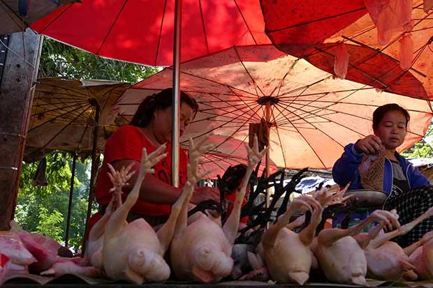 LuangPrabangMorgenmarkt1