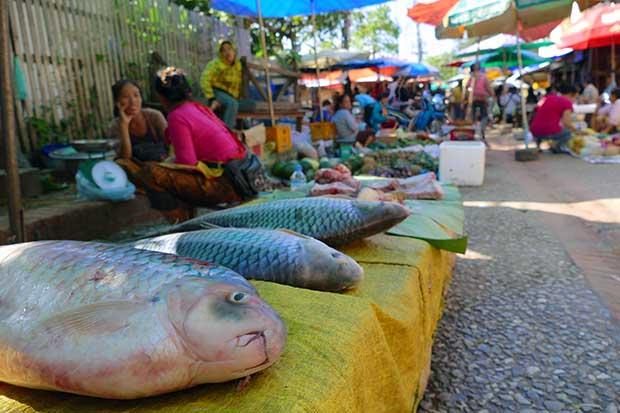 LuangPrabangMorgenmarkt2