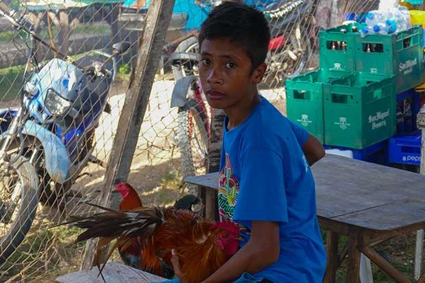 Bantayan Ausflug Junge mit Hahn