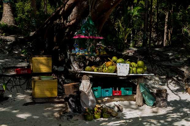 Papaya Beach Getränkeangebot